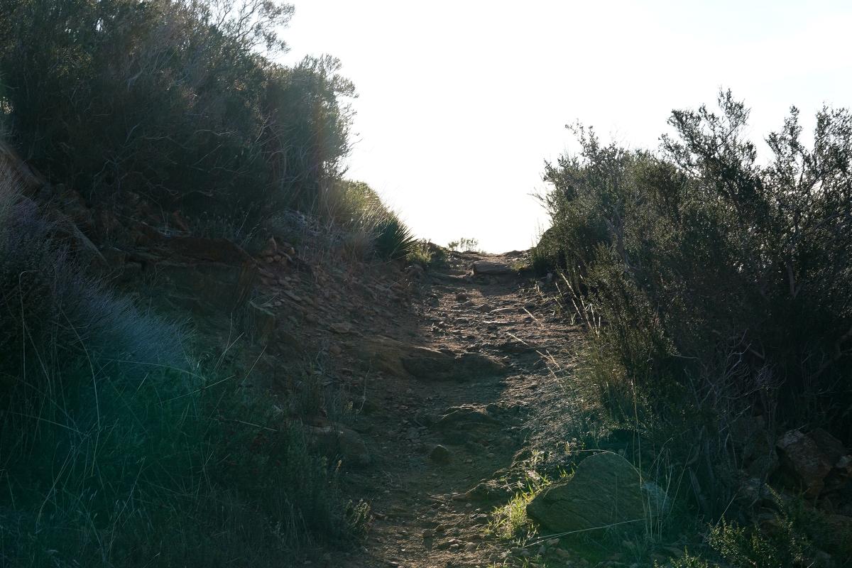 Trailweb