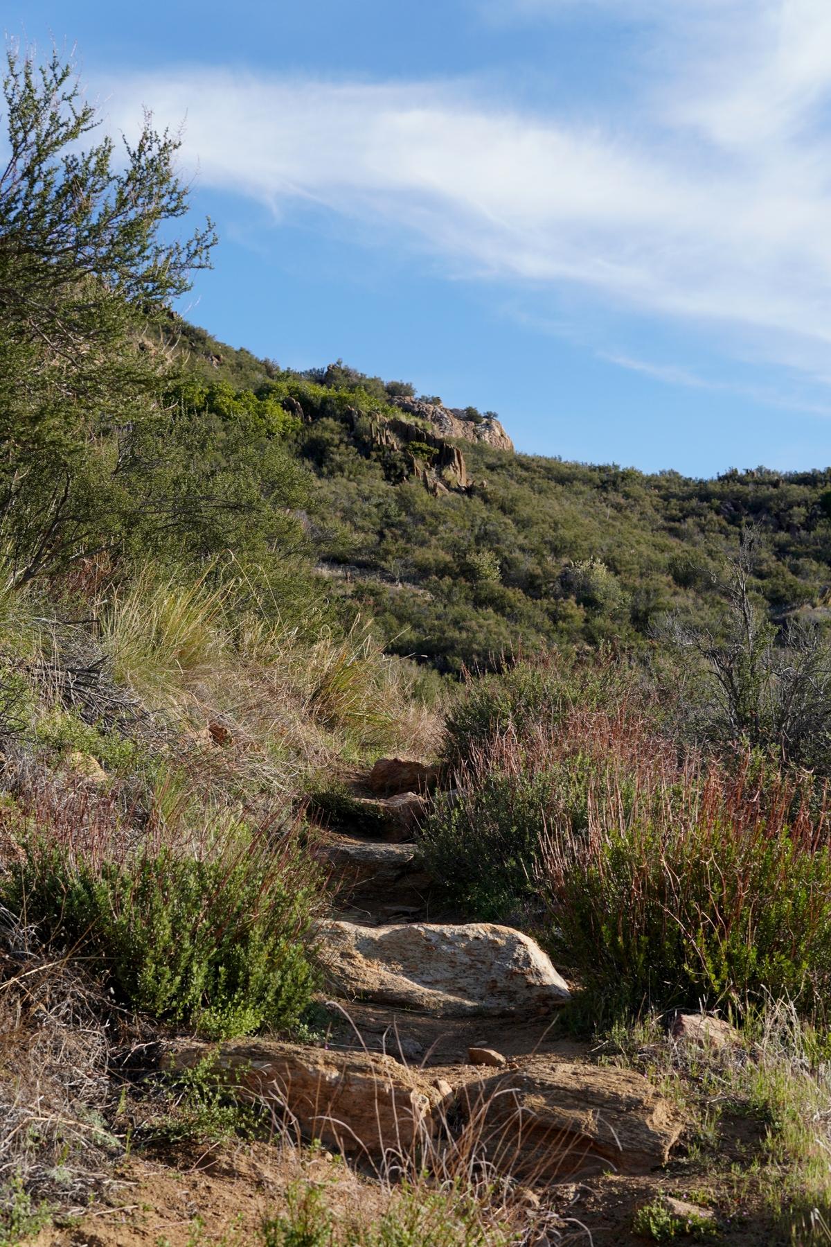 Trailweb2